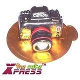 Canon Digital Camera Shaped Cake-Delhi NCR