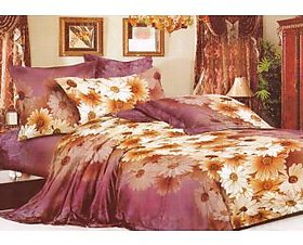 Homefab India 3d Double Bed Sheet With 2 Pillows Cover (DREAMS081)