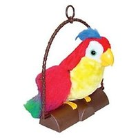 Talking Back Parrot @ Rs. 279 + Waranty