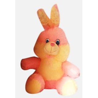 People Cute Rabbit Teddy