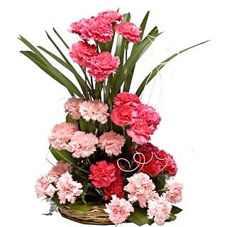 Fragrant Freesia with beautiful Carnations