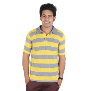 D&Y Single polo t-shirt with stripes (T145)