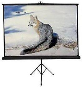 8x6 Tripod Type Projector Screen Size - 8 x 6 Ft. in High Gain Fabric(INLIGHT)