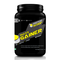 Protein Scoop Mass Gainer Chocolate 3kg/ 6.6 Lbs