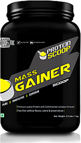 Protein Scoop Mass Gainer 1Kg/ 2.2 Lbs Vanilla