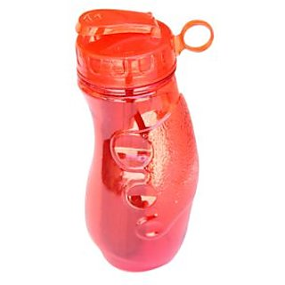 School water Sipper Bottle 500 Ml with Ice holder tube