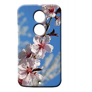Pickpattern Back Cover For Motorola Moto X 2nd Gen DIAGONALFLOWERMX2