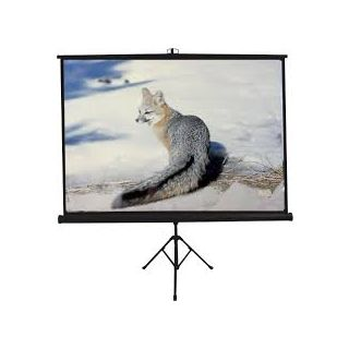 10x8 Dual Tripod Projector Screen Size - 10 Ft. x 8 Ft. (INLIGHT MAKE)