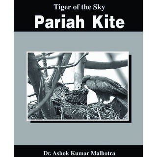 Tiger of the Sky--Pariah Kite