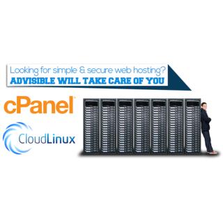 100 MB Premium Linux Web Hosting Service, MySql, Email,Script 99% uptime