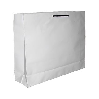 Shopping Paper bag (10 pcs Pack)