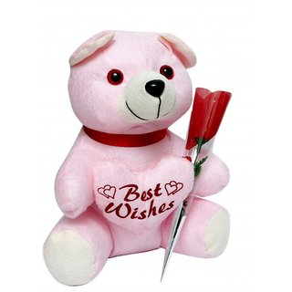 teddy with flower for loved ones