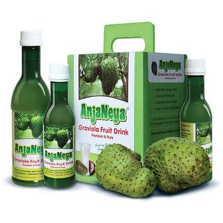 ANJANEYA -Graviola Soursop Health Drink (6 + 6 bottles of 180 ml each) - Regular