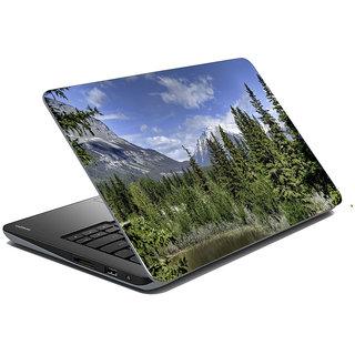 Mesleep Nature Laptop Skin LS-45-181