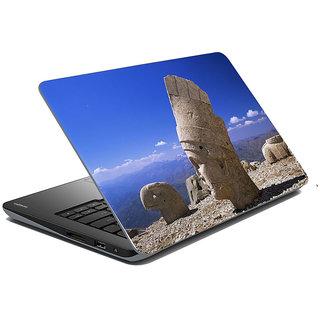 Mesleep Nature Laptop Skin LS-45-309