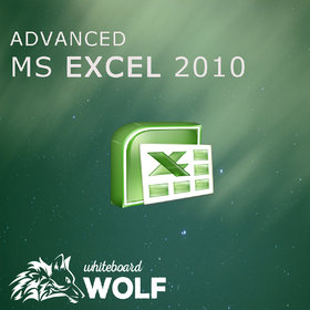 Learn MS Excel 2010 From Basic to Advanced with Whiteboard Wolf