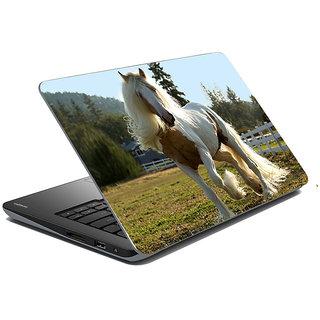 meSleep Wild Life Laptop Skin LS-48-397