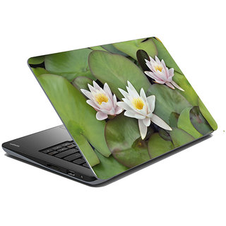 meSleep Nature Laptop Skin LS-49-008