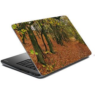 meSleep Nature Laptop Skin LS-49-294