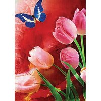 Mesleep Lilly Butterfly Canvas