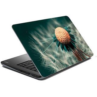 Mesleep Nature Laptop Skin LS-31-014