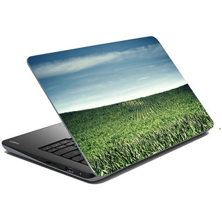 Mesleep Nature Laptop Skin LS-36-398