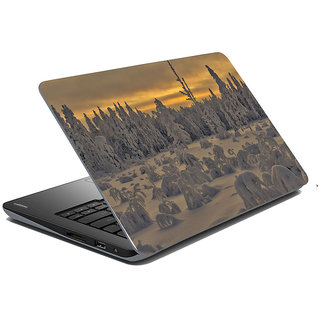 Mesleep Nature Laptop Skin LS-37-287