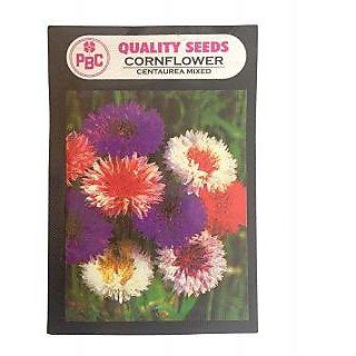 Pbc Cornflower Centaurea Mixed Pack Of 2