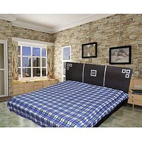 JBG Home Store Blue Check Design Double Blanket