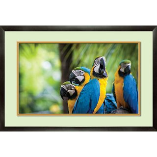 MATAYE GRAPHICS Blue and Yellow Parrots Designer Painting with Frame (17x25inch)