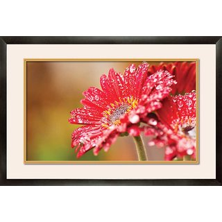 MATAYE GRAPHICS Red Flower Designer Painting with Frame (17 inch x 25 inch)