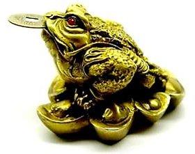 divya shakti 3 Legged Lucky Frog