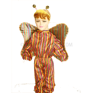 butterfly costume for kids for fancy dress competition and school Functions