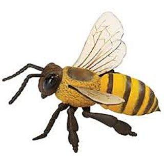 Lighting Bee