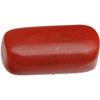 Saffire Dark Saffron Red 535 Grams Natural Coral In Oval Capsule