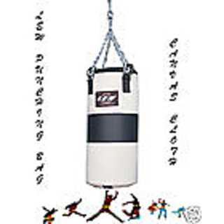 Boxing Punching Bag Canvas Cloth Filled