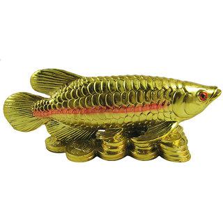 feng shui fish