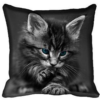 meSleep Cat Digital Printed Cushion Cover 16x16