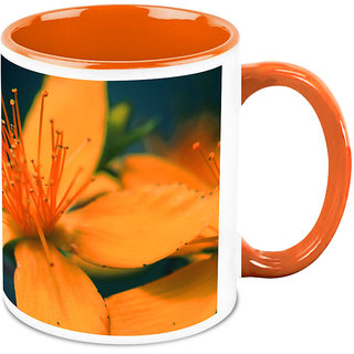 HomeSoGood Amazing Image Of Flower Coffee Mug (HOMESGMUG1670)
