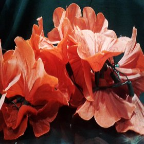VRCT Red Flower String Light (Multicolor)