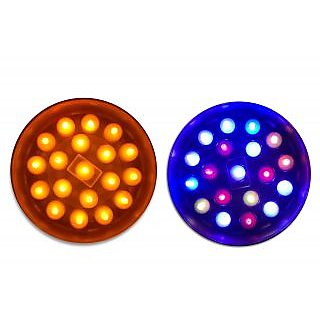 Vrct Set of Two Thali Multicolor Bulb