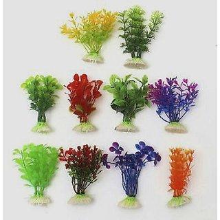 Buy Seeds-Aquatic Plant-Aquarium Plant Seed- More Than 100 Mix