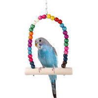 Colorful Swing Bird Toy Parrot Cage Toys Cages Parakeet Cockatiel Finch Lovebird Budgie