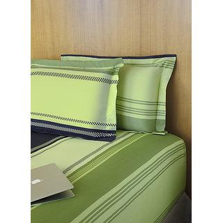 Multi Colour King Bedsheet Set (STP31008)