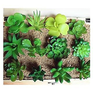 Seeds-Potted Plants Succulents Mini Decorative Artificial Flowers
