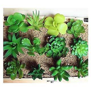 Seeds-Potted Plants Succulents Mini Decorative Artificial Flowers