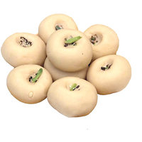 Pedda Sweet 500gm From The Heart Of Shekhwati With Mouth Watering Taste.