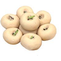 Marwari Penda Sweet 2 Kg From The Heart Of Shekhwati With Mouth Watering Taste.