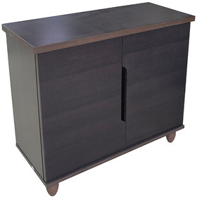 Eros 2 Door Shoe Cabinet/ Storage Cabinet
