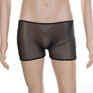 Buy Sexy Mens Sheer Mesh Underwear Boxer Briefs Pants ...